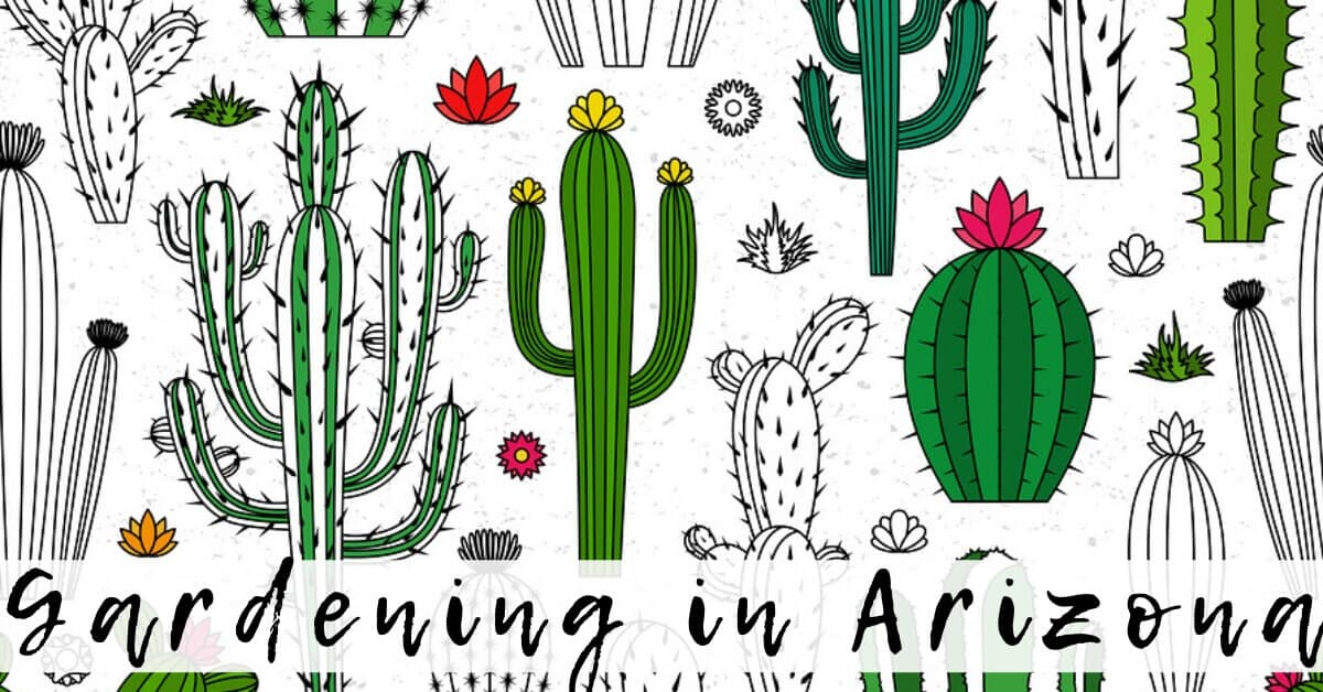 Gardening in Arizona