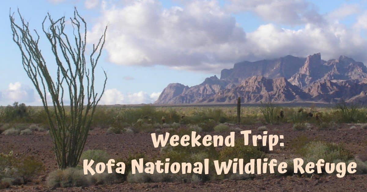 Weekend Trip: Kofa National Wildlife Refuge
