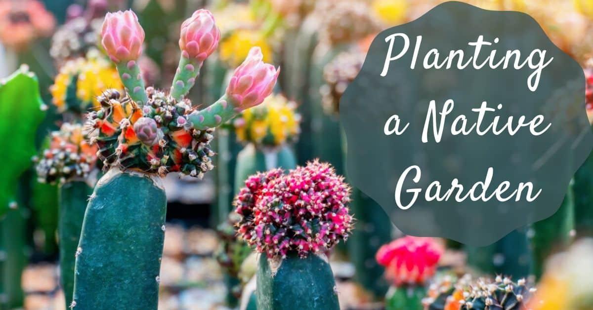 Planting a Native Garden
