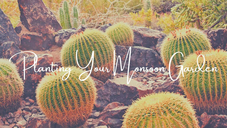 Planting Your Monsoon Garden