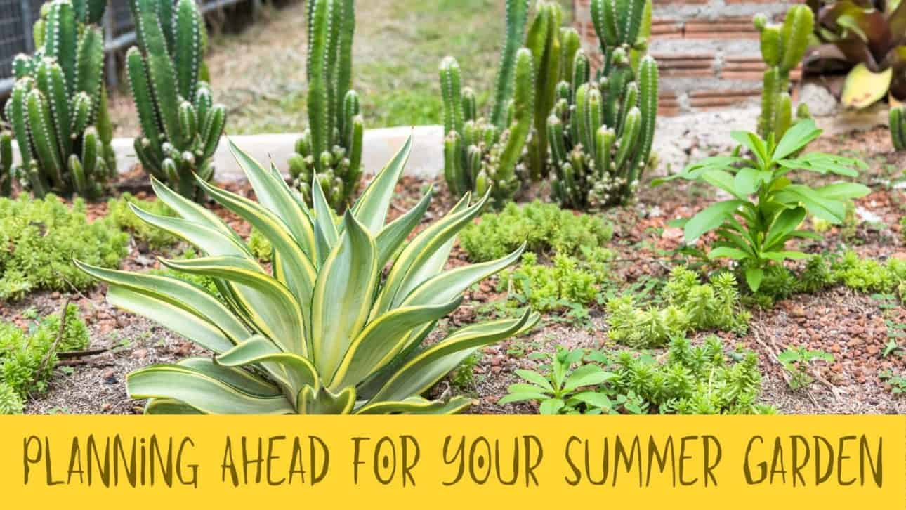Planning Ahead for Your Summer Garden