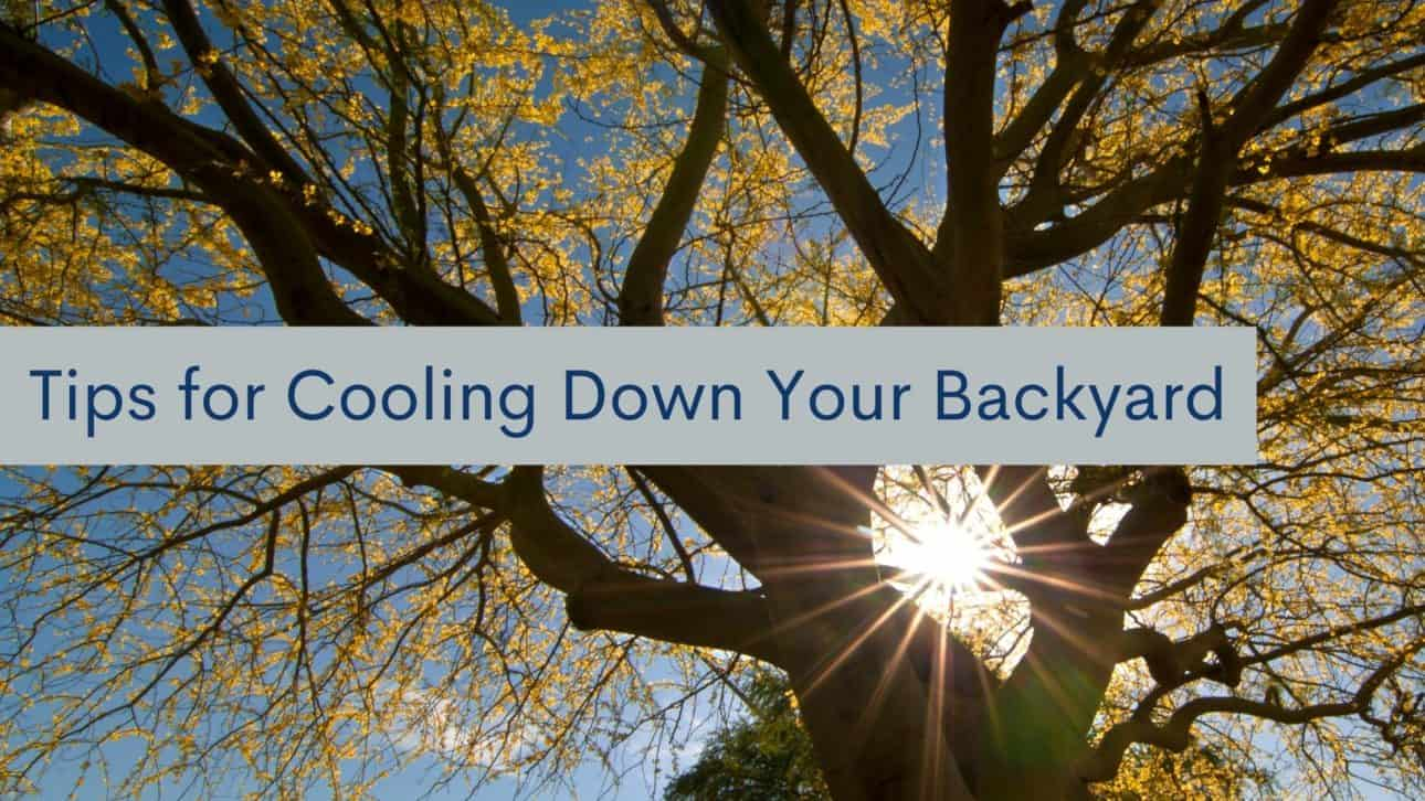 Tips for Cooling Down Your Backyard